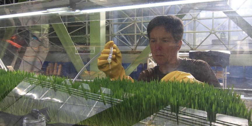 SIMOC at Biosphere 2 - Kai watering barley, by Kai Staats